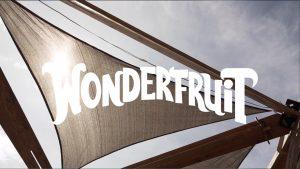 Skateway Winch X Wonderfruit 2018